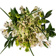 Subtle Elegance Mixed Bouquets  - 8 pk.