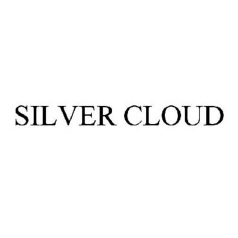 Silver Cloud Menthol 100s 1 Carton