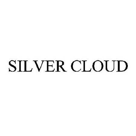 Silver Cloud Red 100s Box (20 ct., 10 pk.)
