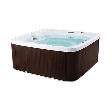 LifeSmart Spa-LS600DX Plug & Play Hot Tub(401406510600.17)