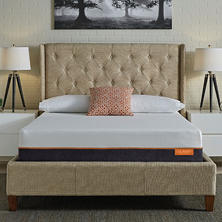 "LulaaBED 11"" Coral Medium Queen Memory Foam Mattress"