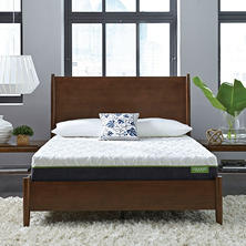 "LulaaBED 10"" Emerald Plush Twin Memory Foam Mattress"