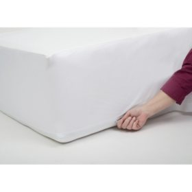 ProtectEase Ultimate Waterproof, Allergy and Bedbug Mattress Protector (Assorted Sizes)