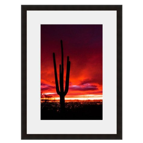 Framed Fine Art Photography - Saguaro Sunrise By Howard Paley