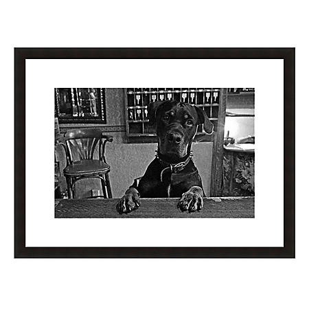 Framed Fine Art Photography - Hound Dog Hotel By Howard Paley