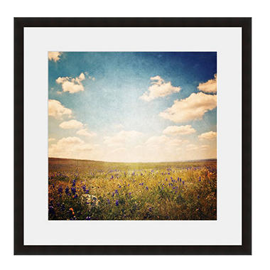 Framed Fine Art Photography - Colorado Field By Keren Lynn