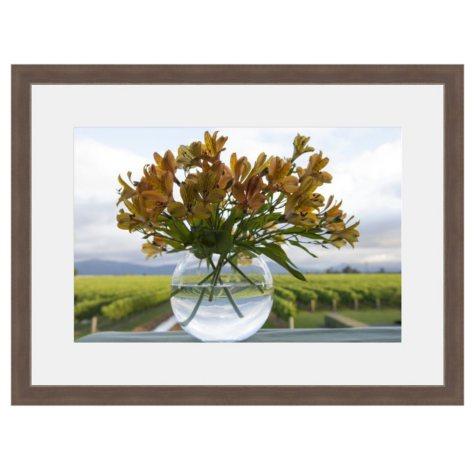 Framed Fine Art Photography - Vineyard Bouquet By Andy Katz