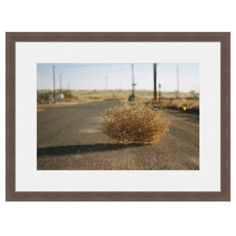 Framed Fine Art Photography - Tumbleweed Crossing By Hannah Gentiles