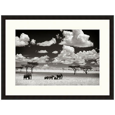 Framed Fine Art Photography - Elephant and Clouds II by Andy Biggs