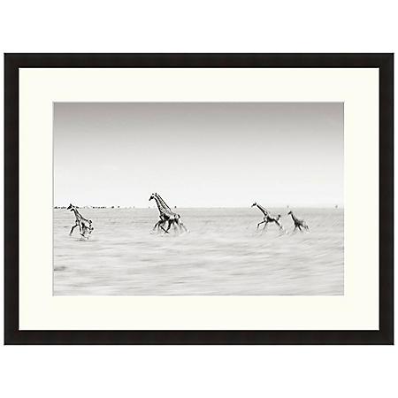 Framed Fine Art Photography - Running Giraffes by Andy Biggs