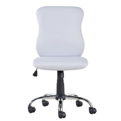 SeatWell Ergonomic Task Chair, Select Color (Supports up to 300lbs.)