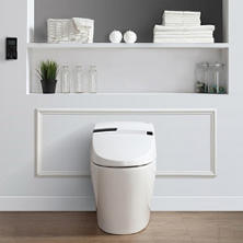OVE Decors Alfred Eco Smart Toilet