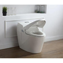 OVE Decors Godfrey Eco Smart Toilet