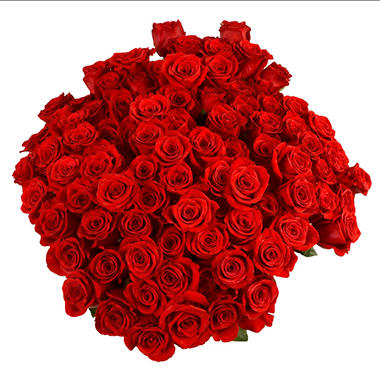 Red Roses with 6 cm Blooms (96 stems)