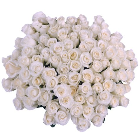 Roses, White with 6 cm Blooms (96 stems)