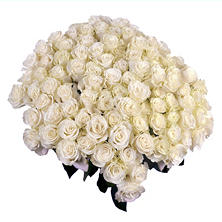 Roses, Mondial White (96 stems)