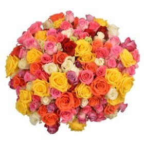 Prewrapped Rose Bouquets, Assorted Colors (10 bouquets)