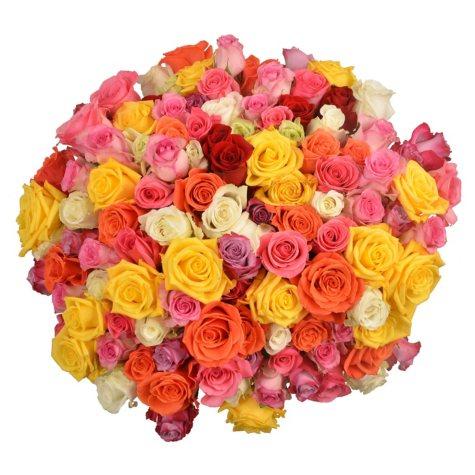 Prewrapped Rose Bouquets, Assorted Colors (10 bouquets)