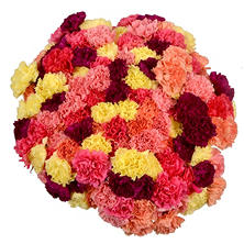 Prewrapped Carnation Bouquets, Assorted Colors (20 bouquets)