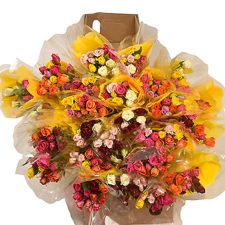 Prewrapped Spray Rose Bouquets, Assorted Colors (20 bouquets)