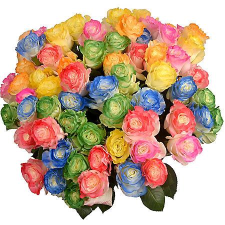 Roses, Tinted Rainbow Illusion (72 stems)