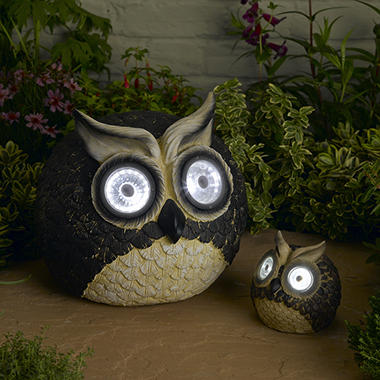 Owl Solar Accent Lights