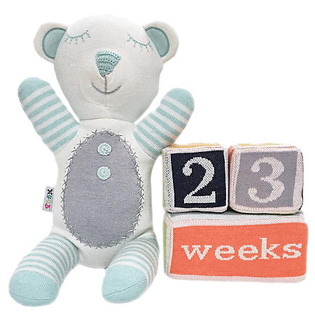 NYGB Knit Bear Plush and Milestone Blocks, Blue