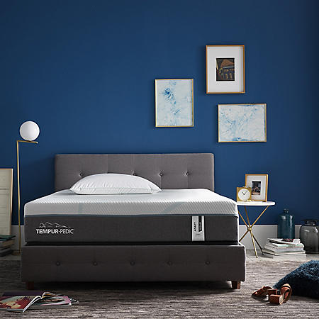 "TEMPUR-Adapt Medium Hybrid Pressure-relieving and Motion-reducing 11"" Queen Mattress"