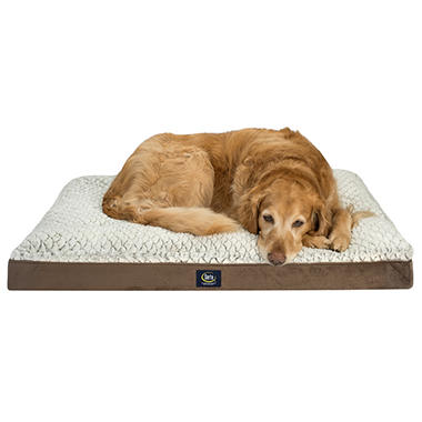 Serta Perfect Sleeper XL Orthopedic Euro Top Ped Bed, 40
