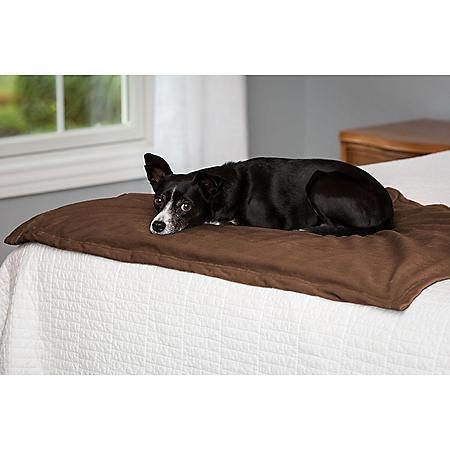 "Serta Water-Resistant Plush Pet Blanket, 40"" x 30"" (Choose Your Color)"