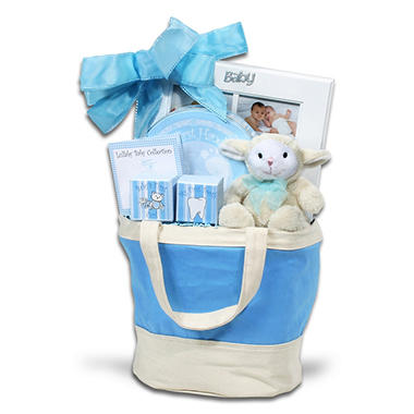 Alder Creek Baby Keepsake Tote - Blue
