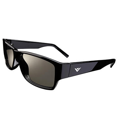 VIZIO Theater Passive 3D Glasses Double Pack