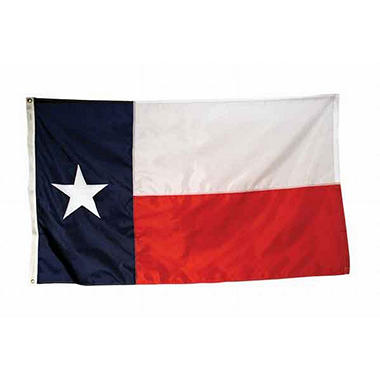 Texas 4' x 6' Nylon Flag