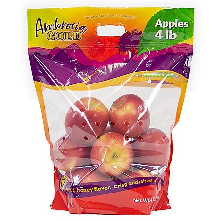 Ambrosia Apples (4 lbs.)