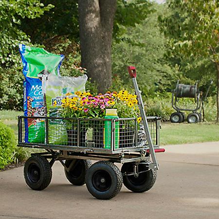 Rankam Garden Utility and Dumping Cart