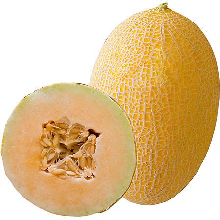 Sugar Kiss Melon (2 ct.)