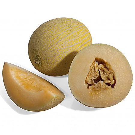 Summer Kiss Melon (1 ct.)
