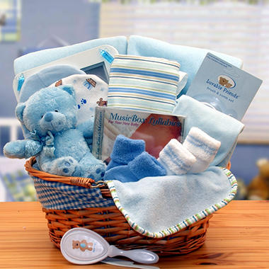 Simply the Baby Basics New Baby Gift Basket in Blue