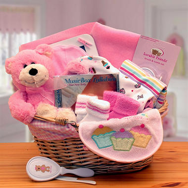 Simply the Baby Basics New Baby Gift Basket in Pink