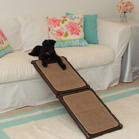 Gen7Pets Indoor Carpet Ramp, Mini
