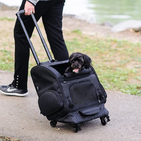 Gen7Pets Roller-Carrier for Pets up to 10 lbs. (Choose Your Color)