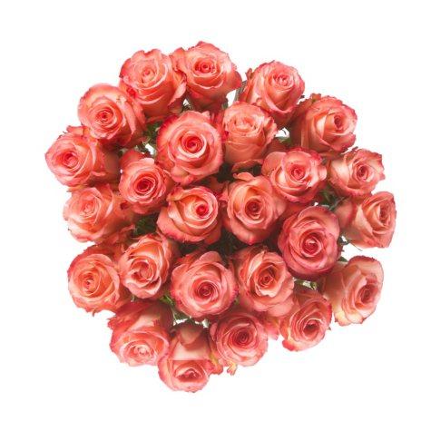 Pink Premium Ecuadorian Roses  (90 stems)
