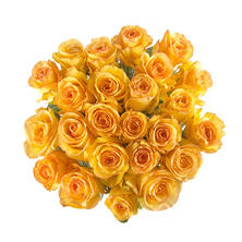 Rainforest Alliance Certified Roses, Yellow (100 stems)