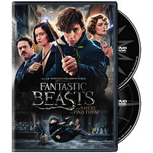 Fantastic Beasts and Where to Find Them: Special Edition (DVD)