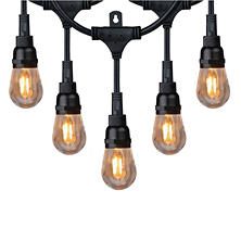 Honeywell 36' Commercial Grade LED Indoor/Outdoor String Lights