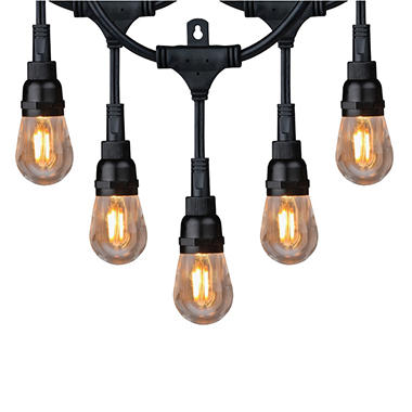 Honeywell 36u0027 Commercial Grade LED Indoor/Outdoor String Lights