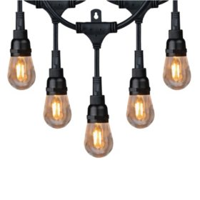 Honeywell 36' Commercial Grade LED Indoor/Outdoor String Lights