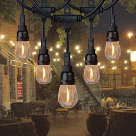 Honeywell 36 Commercial Grade Led Indoor Outdoor String Lights