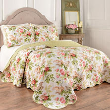 Brianna 3-Piece Reversible Quilt Collection (Assorted Sizes)