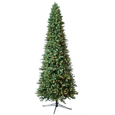 Memberu0027s Mark 12u0027 Pre Lit Fraser Fir Slim Christmas Tree